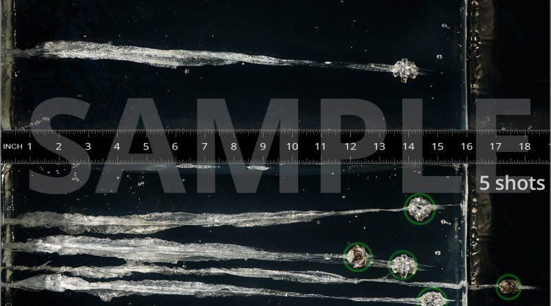 sample-gel-graphic
